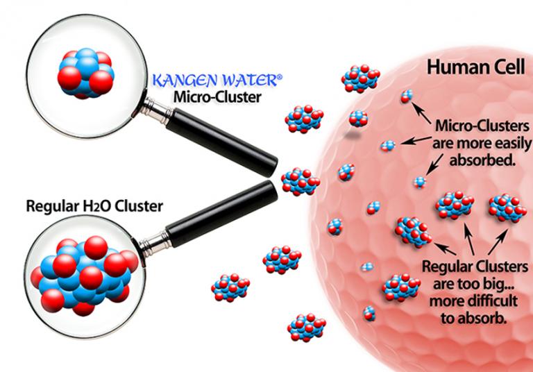 Bảng giá máy lọc nước điện giải ion kiềm Kangen Hình 5